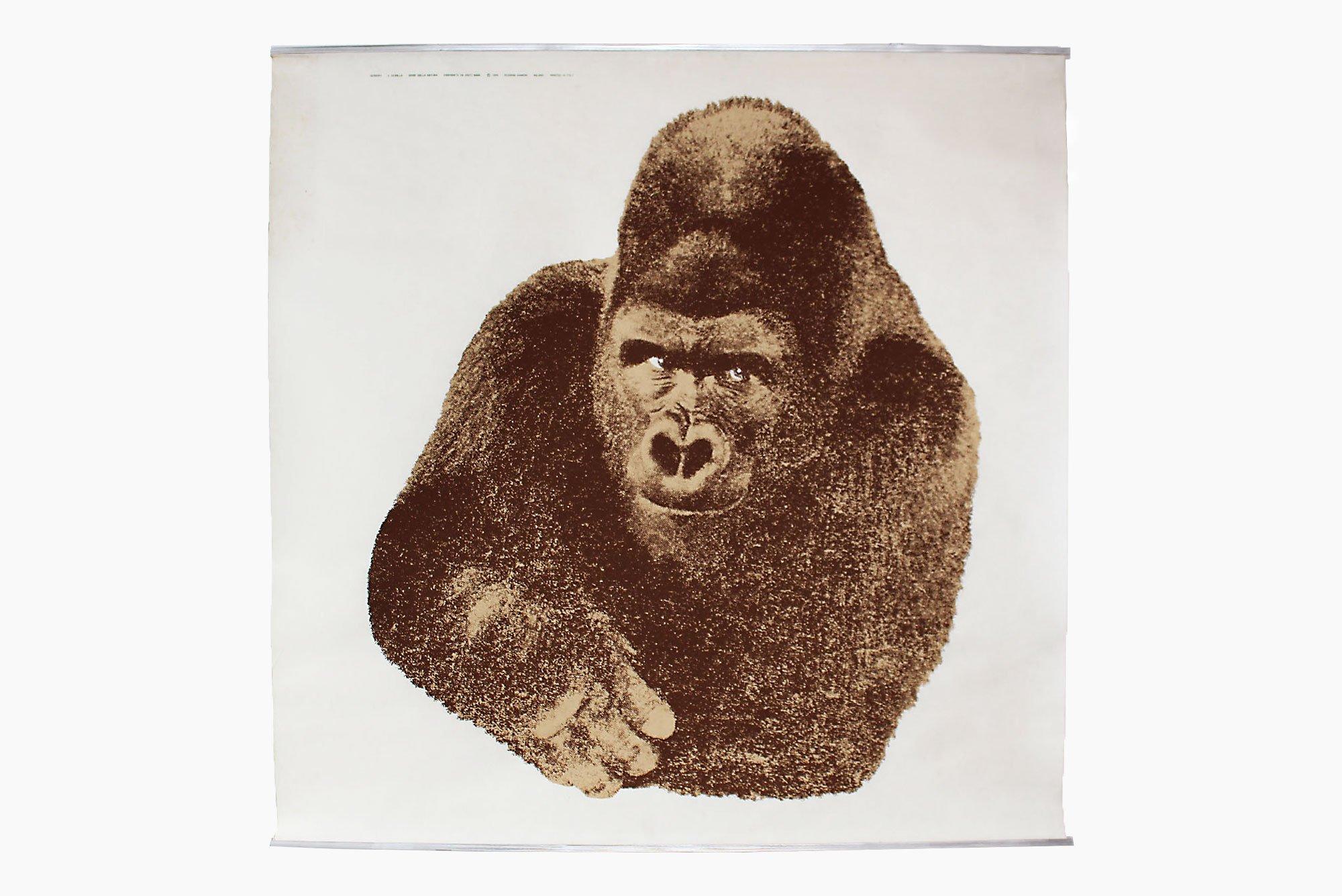 Enzo Mari  |   Il Gorilla - Gorilla poster
